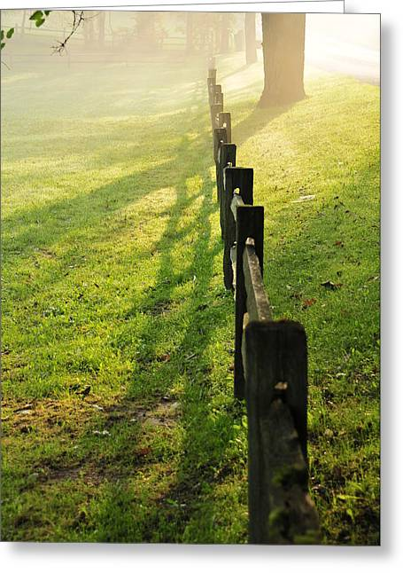 Split Rail Fence Greeting Cards - Fence in Fog Greeting Card by David Arment