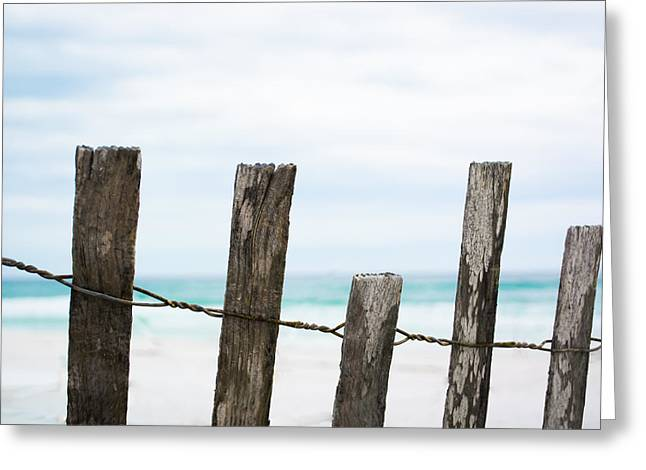 Florida House Greeting Cards - Fence in Paradise Greeting Card by Shelby  Young