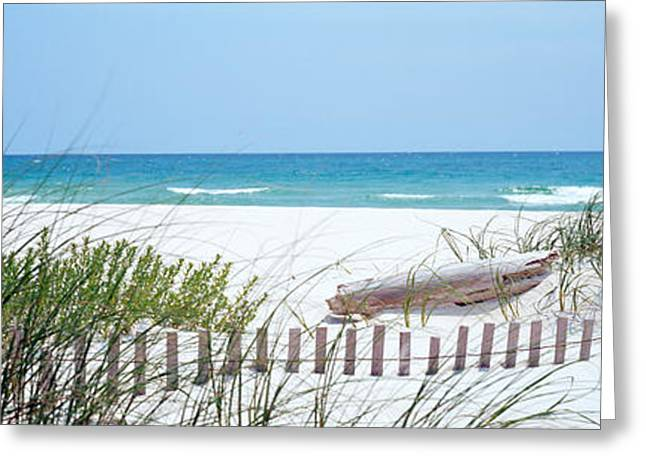 Fence On The Beach, Bon Secour National Greeting Card by Panoramic Images