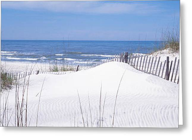 Fence On The Beach, Gulf Of Mexico, St Greeting Card by Panoramic Images