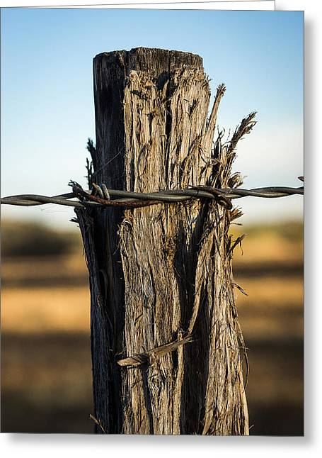 Rincon Greeting Cards - Fence Post Greeting Card by A O Tucker