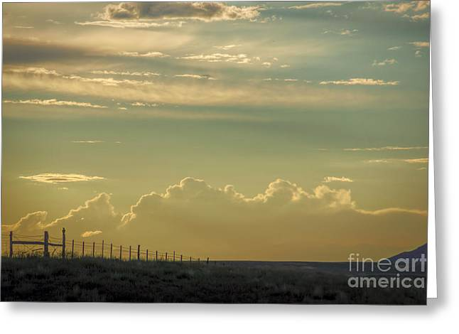 Fence Post Sentinel Greeting Card by Janice Rae Pariza