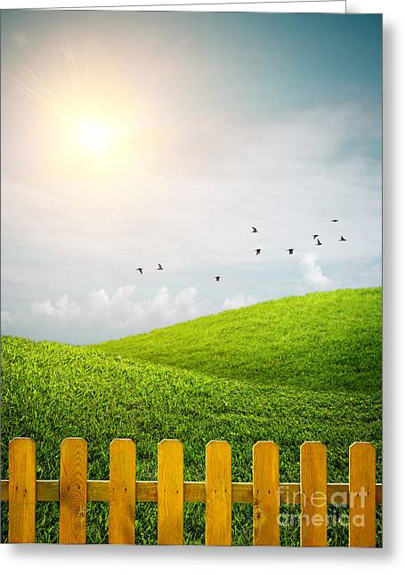 Vibrant Green Greeting Cards - Fenced Grass Hills Greeting Card by Carlos Caetano