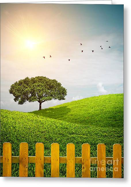 Vibrant Green Greeting Cards - Fenced Grass Hills II Greeting Card by Carlos Caetano