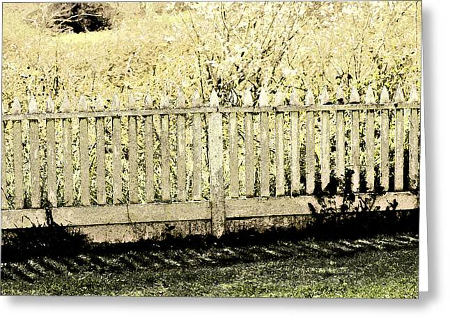 Pioneer Homes Digital Greeting Cards - Fenced In Greeting Card by Bonnie Bruno