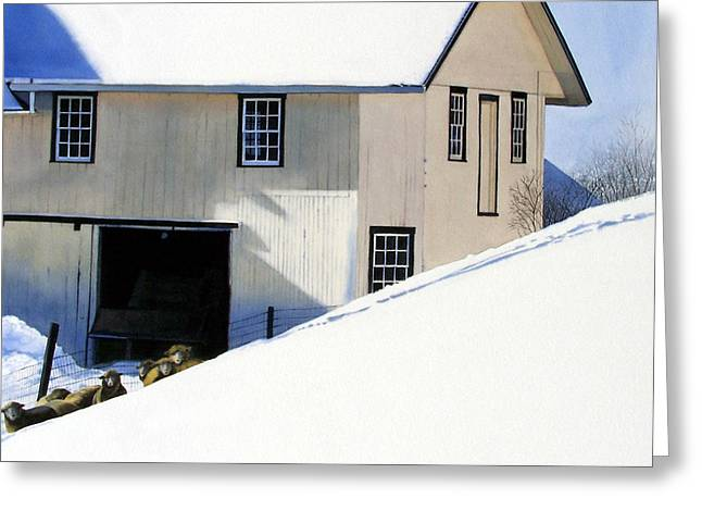 Winter Photos Paintings Greeting Cards - Fenced In Greeting Card by Denny Bond