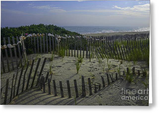 Crooked Fence Greeting Cards - Fences Greeting Card by Amanda Sinco