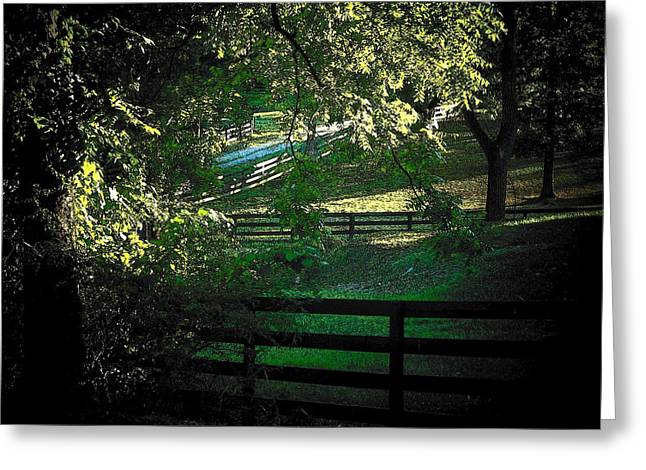 Fences On The Farm Greeting Card by Joyce Kimble Smith