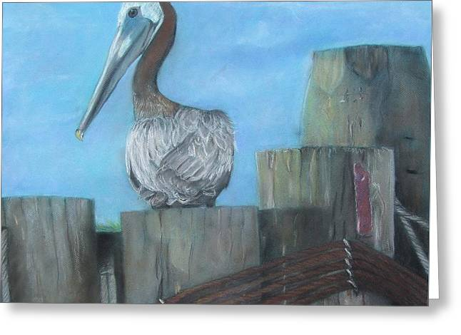 Nautical Pastels Greeting Cards - Ferry Pelican Greeting Card by Cathy Lindsey ART