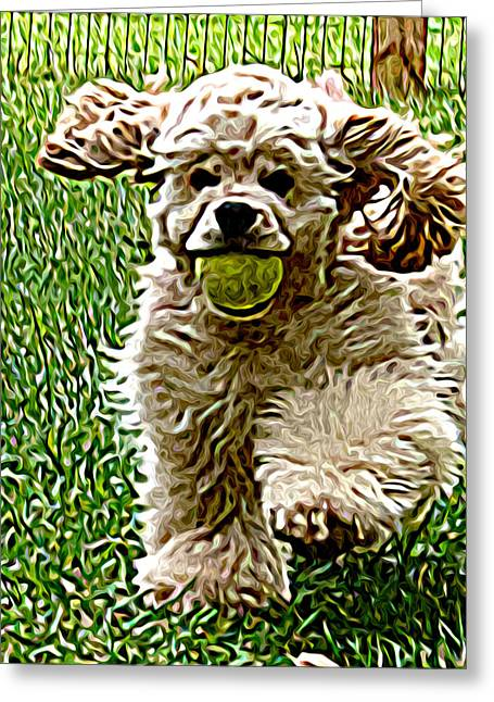 K-9 Greeting Cards - Fetch Greeting Card by Laura Brightwood