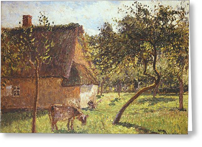 Farm Fields Paintings Greeting Cards - Field at Varengeville Greeting Card by Camille Pissarro