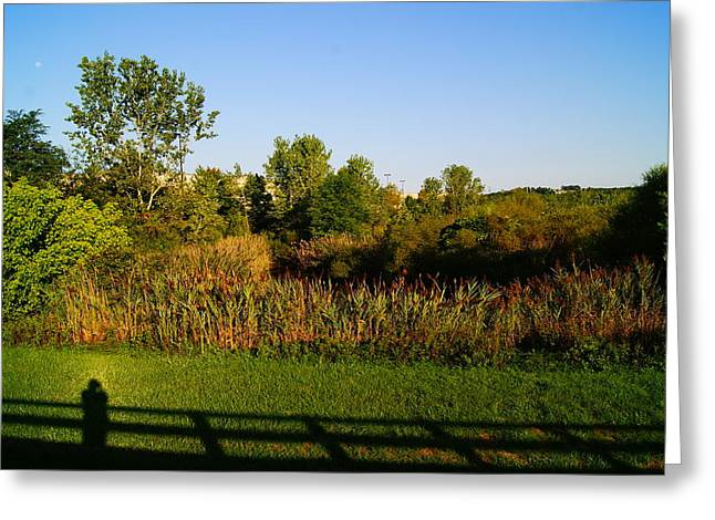 Dream Scape Greeting Cards - Field of dreams Greeting Card by Joshua Tillery
