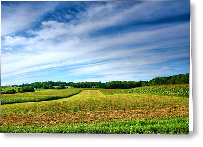 Farm Framed Prints Greeting Cards - Field of Dreams Two Greeting Card by Steven Ainsworth