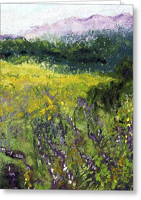 Meadow Pastels Greeting Cards - Field of Flowers Greeting Card by David Patterson