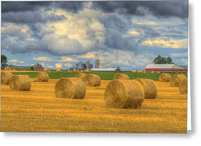 Hay Bales Greeting Cards - Field of Gold Greeting Card by Claudio Bacinello