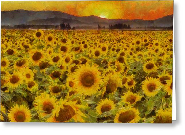 Yellow Sunflower Digital Greeting Cards - Field of Sunflowers Greeting Card by Mark Kiver