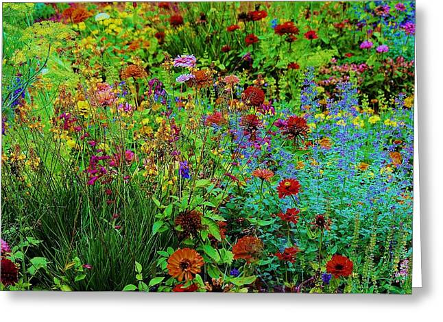 Did You See That Greeting Cards - Field of Wild Flowers Greeting Card by Paulette Thomas