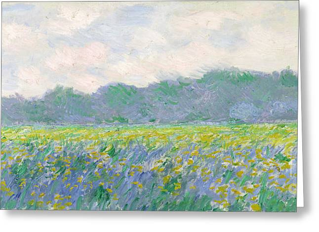 Rural Landscapes Paintings Greeting Cards - Field of Yellow Irises at Giverny Greeting Card by Claude Monet