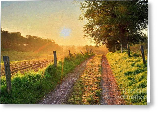 Harmonious Paintings Greeting Cards - Field Road Greeting Card by Veikko Suikkanen