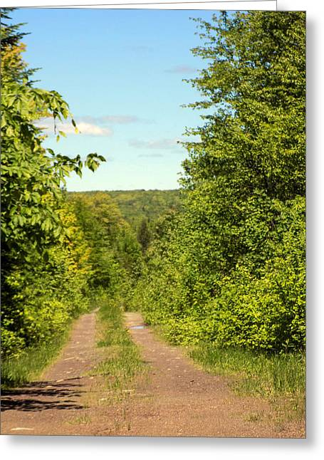 Rural Maine Roads Greeting Cards - Field Road Greeting Card by William Tasker