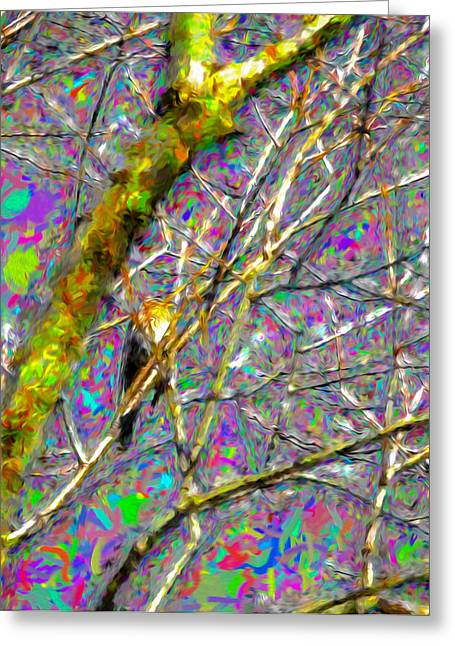 Sit-ins Greeting Cards - Fieldfare abstract Greeting Card by Leif Sohlman