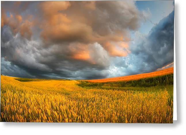 Storm Landscape Greeting Cards - Fields Of Storm Greeting Card by Piotr Krol (bax)