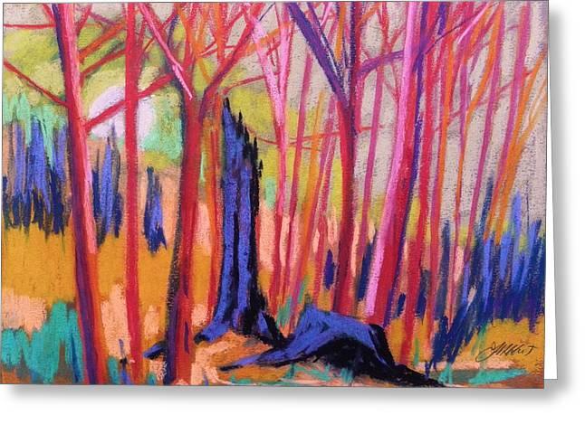 Fiery Sunrise Greeting Card by John  Williams
