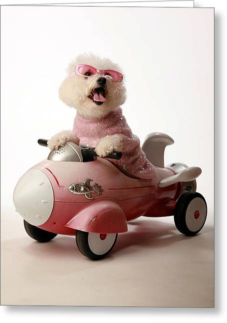 Michael Sweet Greeting Cards - Fifi is ready for take off in her rocket car Greeting Card by Michael Ledray