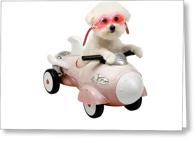Family Member Greeting Cards - Fifi loves her rocket car Greeting Card by Michael Ledray