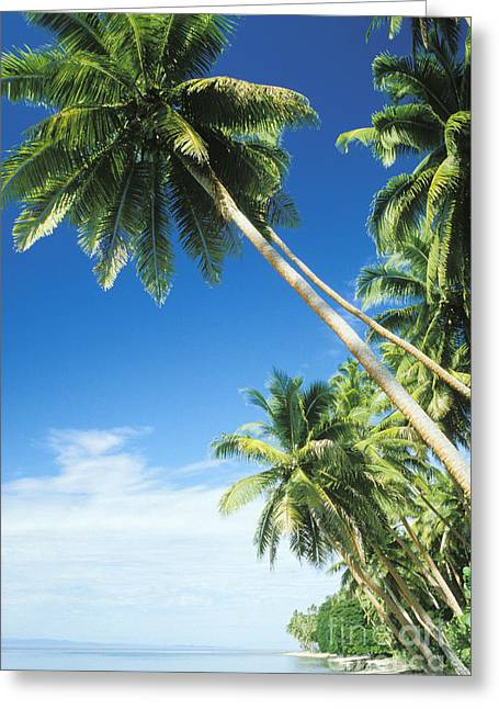 Overhang Greeting Cards - Fiji, Vanua Levu Greeting Card by Peter Stone - Printscapes
