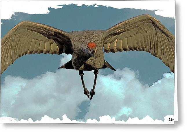 Sandhill Cranes Greeting Cards - Final Approach Greeting Card by Larry Linton