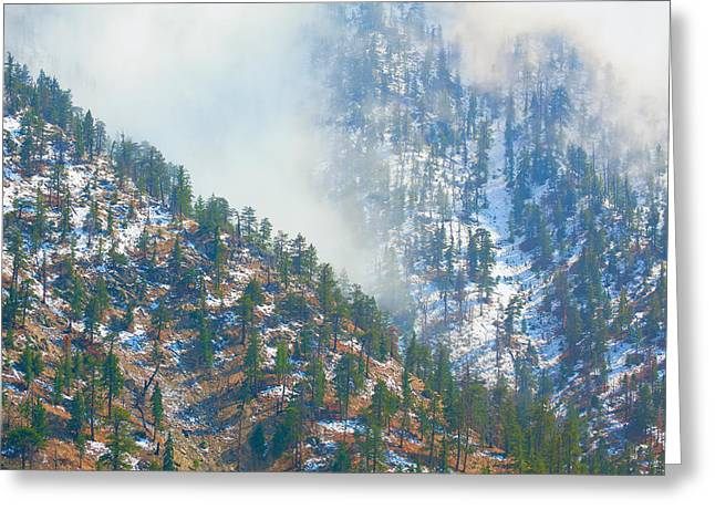 Angeles Forest Greeting Cards - Finally - Hallelujah Greeting Card by Ram Vasudev