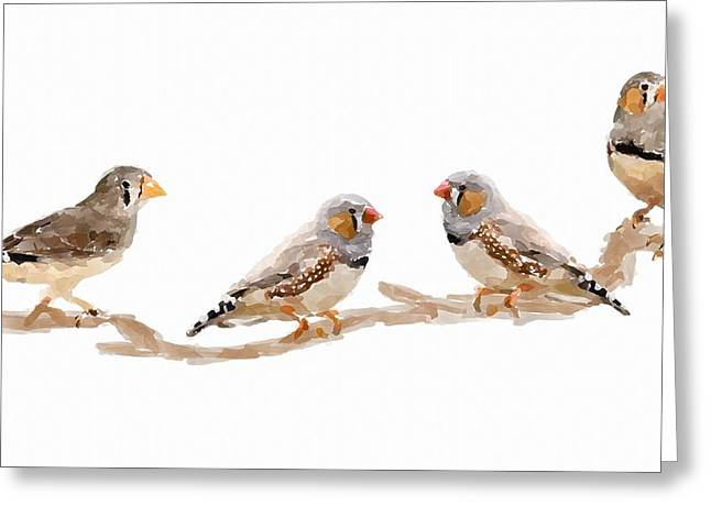 Zebra Finch Greeting Cards - Finches Greeting Card by Chris Butler