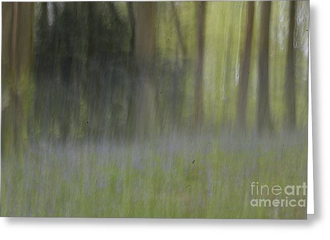 Photo Impressionist Greeting Cards - Fine Art- Bluebells in the woods Greeting Card by Jenny Potter
