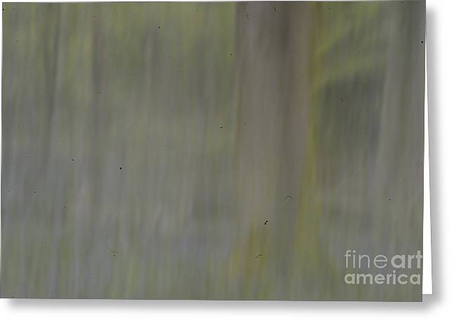 Photo Impressionist Greeting Cards - Fine Art - Bluebells in the woods scene 2 Greeting Card by Jenny Potter
