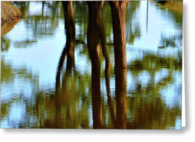 Pond Framed Prints Greeting Cards - Fine Art Photography - Reflections Greeting Card by Gerlinde Keating - Keating Associates Inc