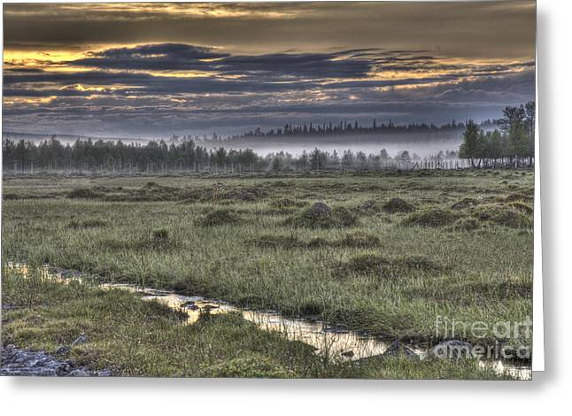 Haze Greeting Cards - Finnish Moorland Greeting Card by Heiko Koehrer-Wagner
