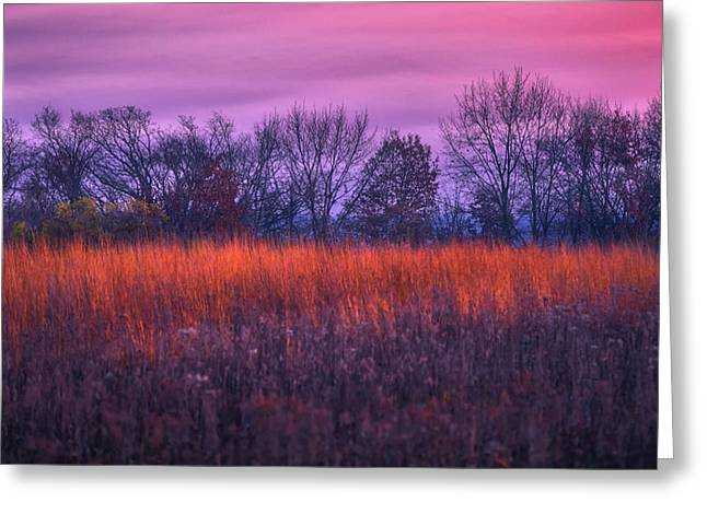 Fire And Ice - Sunset And Prairie At Retzer Nature Center Greeting Card by Jennifer Rondinelli Reilly - Fine Art Photography