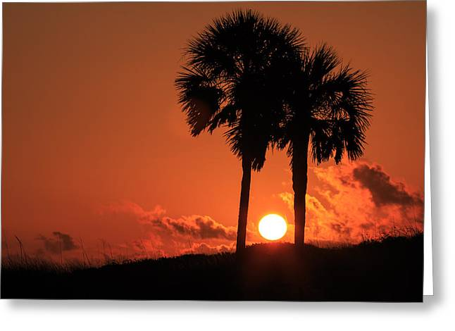 On The Beach Greeting Cards - Fire Between Us Greeting Card by Gary Oliver