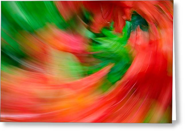 Ferocity Greeting Cards - Fire Dragon Floral Swirl Greeting Card by Steven Maxx