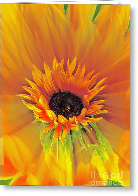 Engulfing Greeting Cards - Fire Flower Greeting Card by Karen Lewis