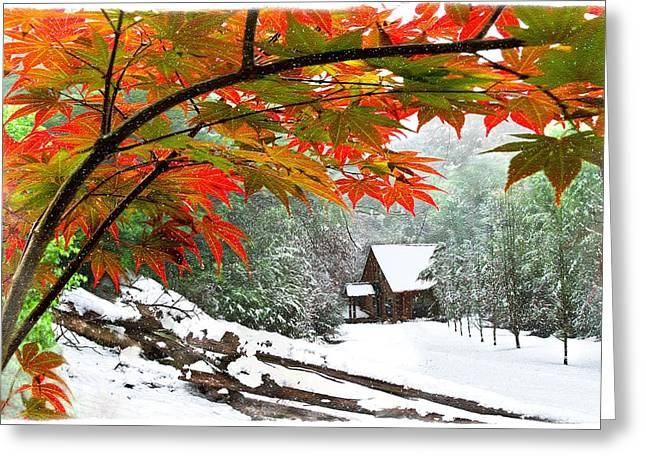 Fire Fog And Snowy Fence Greeting Card by Debra and Dave Vanderlaan