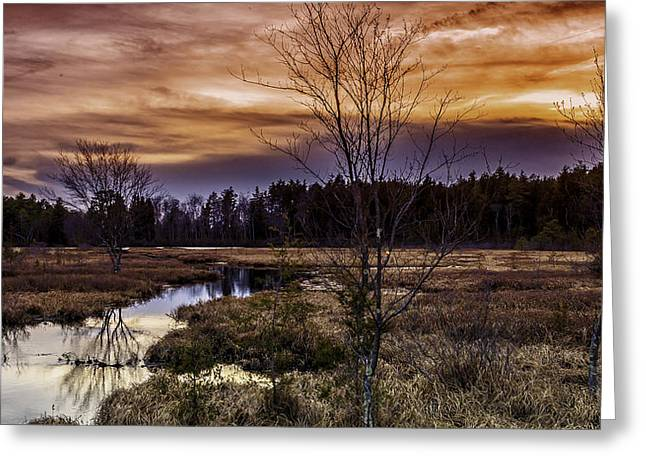 New Jersey Pine Barrens Greeting Cards - Fire in the Pine Lands Sky Greeting Card by Louis Dallara
