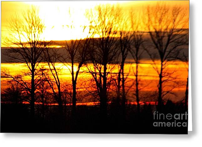 Fire In The Sky Greeting Card by Nick Gustafson