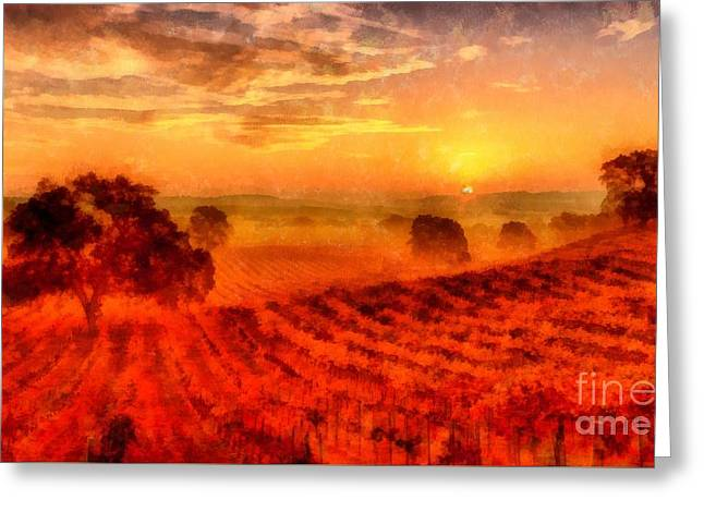 Grape Vineyard Greeting Cards - Fire of a New Day Greeting Card by Edward Fielding