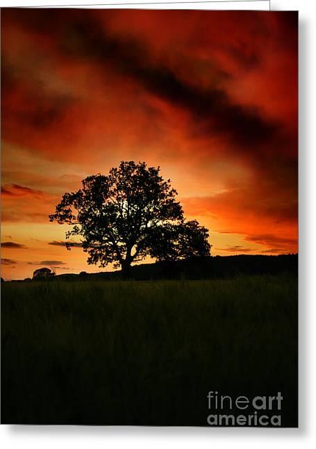 Fire On The Sky Greeting Card by Angel  Tarantella