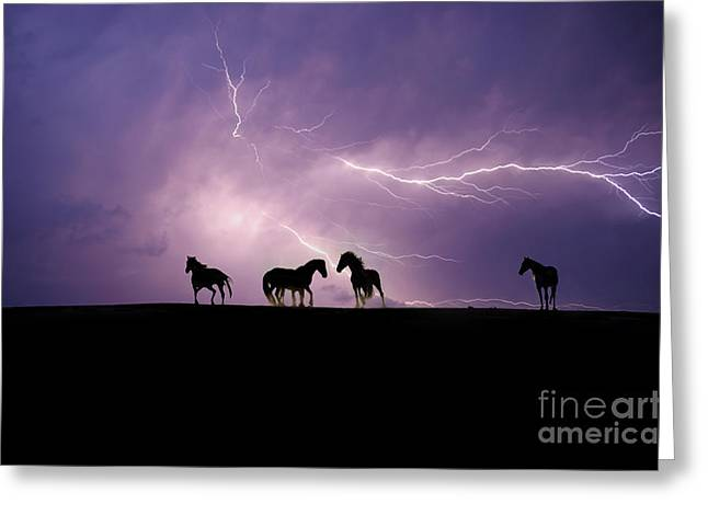 Wild Horses Greeting Cards - Fire Storm Greeting Card by Lisa Dearing