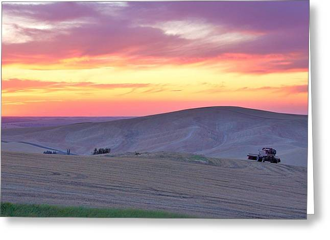 Farmers Field Greeting Cards - Firelight Harvest Greeting Card by Steve Luther