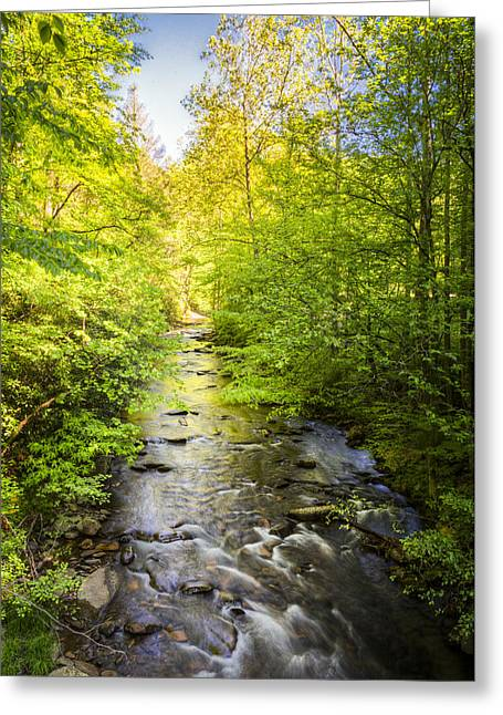 Reflection In Water Greeting Cards - Fires Creek Greeting Card by Debra and Dave Vanderlaan