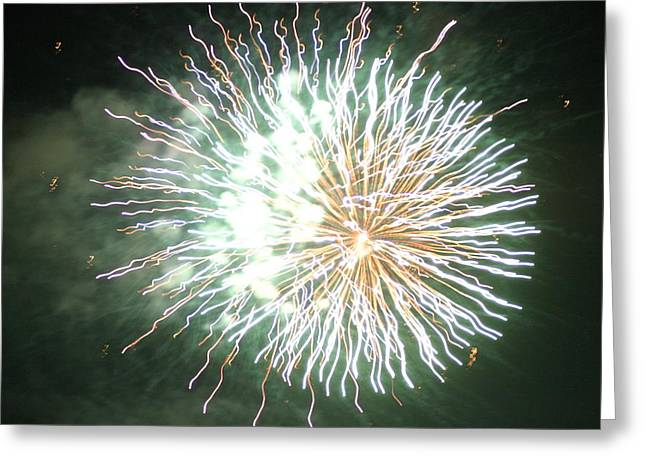 Fireworks In The Park 4 Greeting Card by Gary Baird